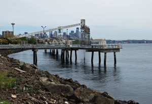 Public Fishing Pier Seattle
