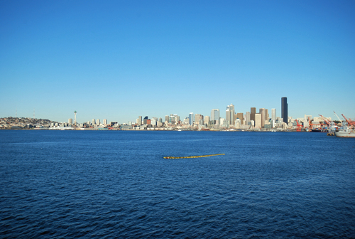 Seattle Skyline | Jack Block Park