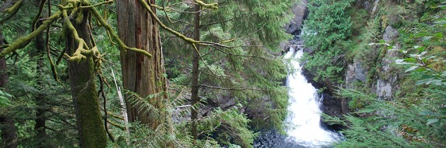 Twin Falls Trail | A Fun Hike For All Ages