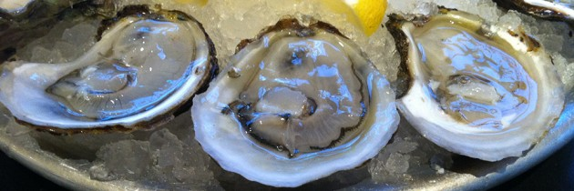 Taylor Shellfish | Fresh Oysters on Capitol Hill