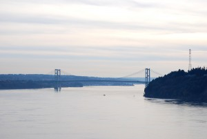 A view of the Narrows Bridge from Point Defiance Park