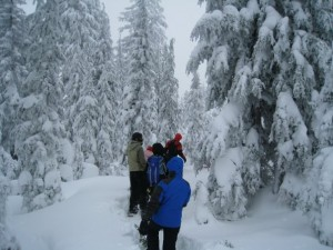 Snowshoeing at Crater Lake National Park