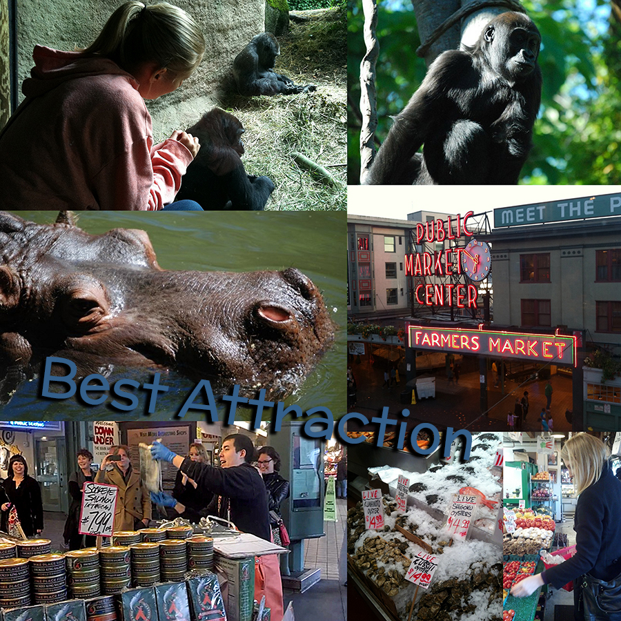 Seattle Bloggers 2013 Year in review best attraction