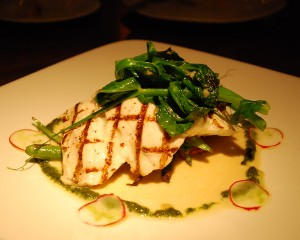 Grilled Alaska Halibut at Ponti Seafood Grill