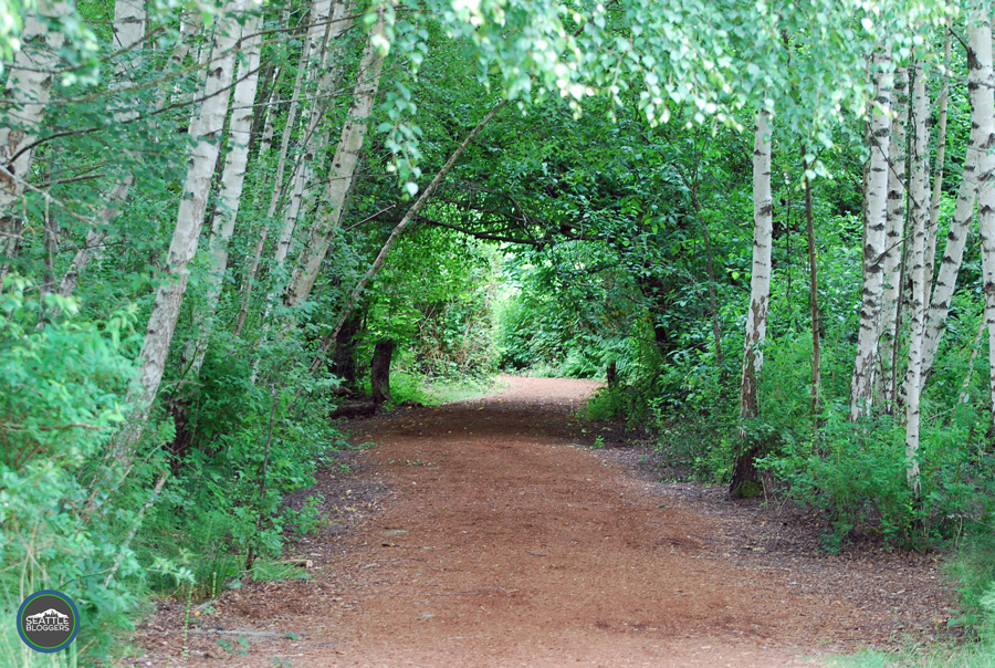 Mercer Slough Nature Park