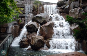 Waterfall Garden Park Seattle