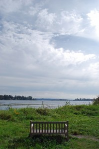 Union Bay Natural Area Seattle