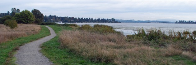 Union Bay Natural Area in Seattle