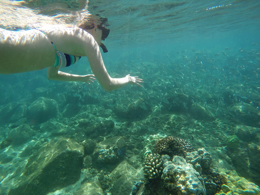 Honolua Bay Snorkeling