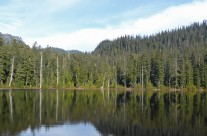 Lodge Lake | Short Hike Near Snoqualmie Pass