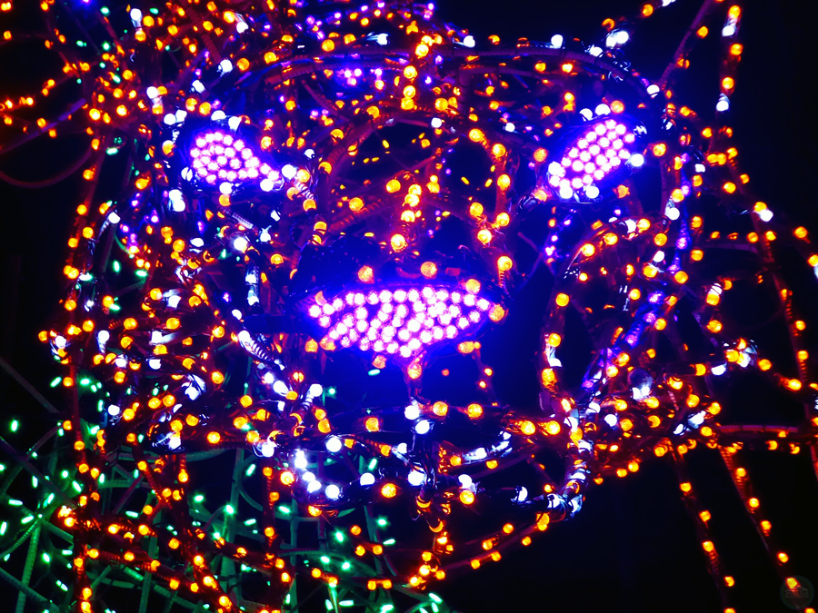 Woodland Park Zoo WildLights