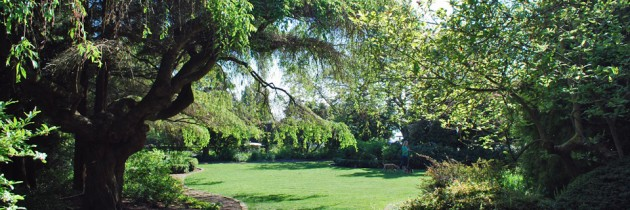 Parsons Garden | A Hidden Gem on Queen Anne Hill