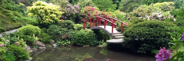 Kubota Garden | A Hidden Gem in South Seattle