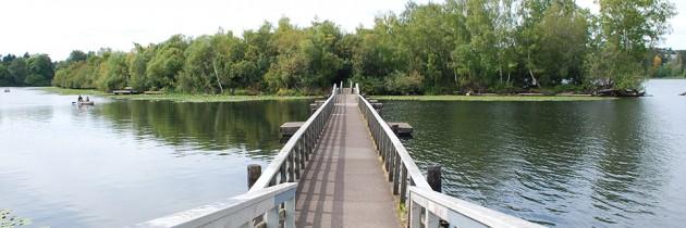 Arboretum Waterfront Trail on Lake Washington
