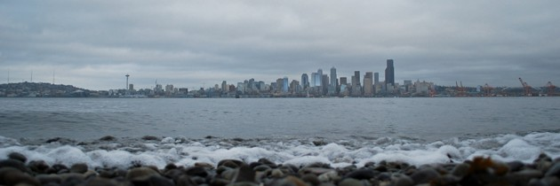 Seacrest Park | Incredible View of Seattle Skyline