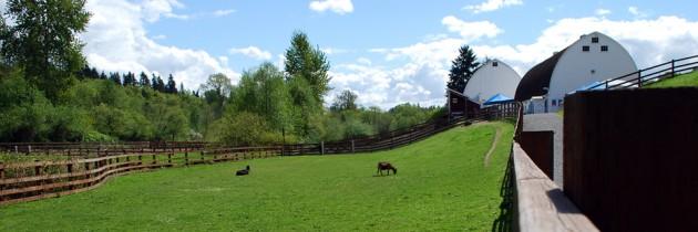 Kelsey Creek Farm in Bellevue