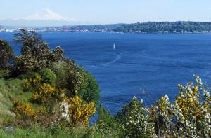 Le migliori viste di Seattle | Magnolia Boulevard