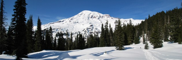 Nisqually Vista Snowshoe at Mount Rainier National Park