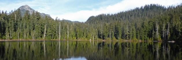 Lodge Lake | Short Hike Near Snoqualmie Pass