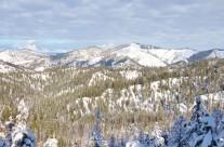 Wenatchee Crest Snowshoe at Blewett Pass